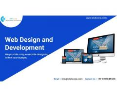 Website Designing Company in Indore Location
