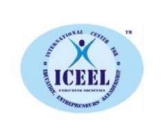 ICEEL - IT Services, Import Export Training Institute, IT So...