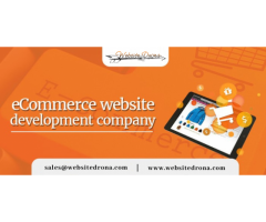 Ecommerce Website Development Company in Jaipur