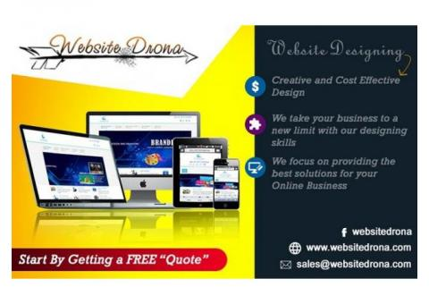 Website Design and Development Company in Delhi NCR, Website Designing Companies in Delhi NCR